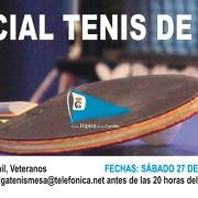 baner-tenismesa-2014
