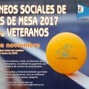 socialtenismesaveteranos2017